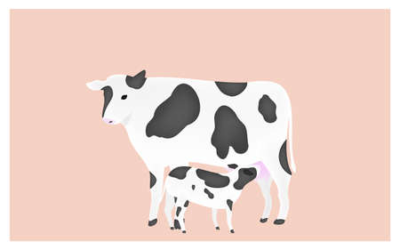 Illustration of a calf sucking the milk of mother cow Pink background