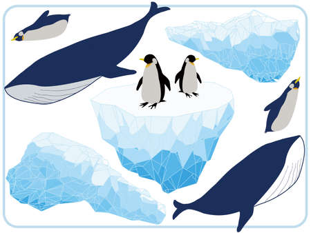 Icebergs, penguins and whales