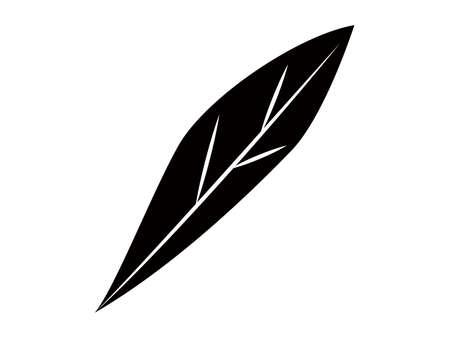 Plant leaves monochrome