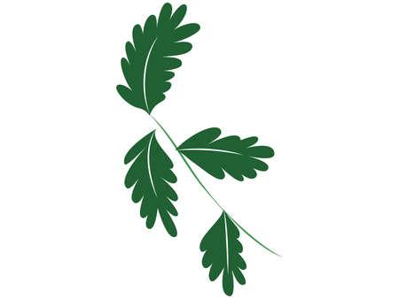 Green leaf frame material