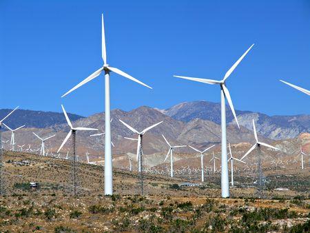 resortes: un campo de aerogeneradores cerca de Palm Springs