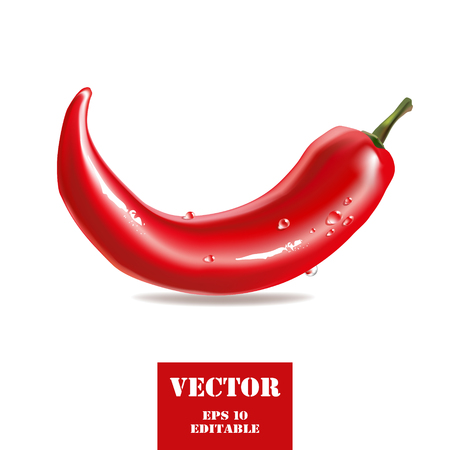 Red chili pepper stylized vector illustration