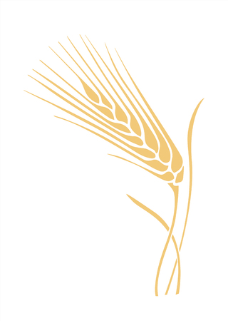 golden wheat spike stylized vector illustration