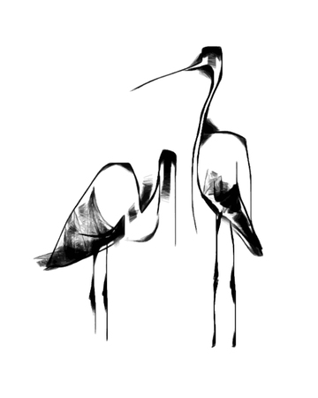 a pair of black and white herons isolated on white background, stylized minimalistic vector illustration