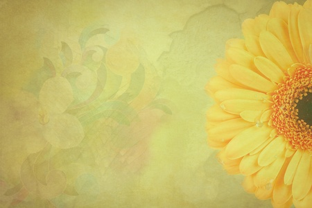 Gerbera flowers Vintage background Stock Photo