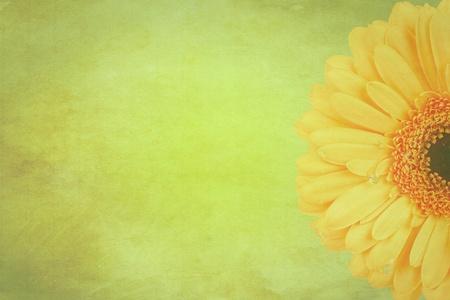 Gerbera flowers Vintage background photo