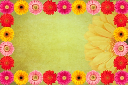 Gerbera flowers Vintage background Stock Photo - 12206304