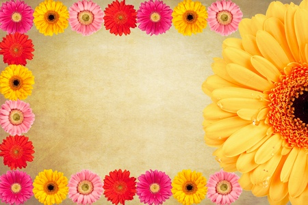 Gerbera flowers Vintage background photo