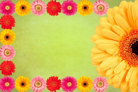 Gerbera flowers Vintage background Stock Photo