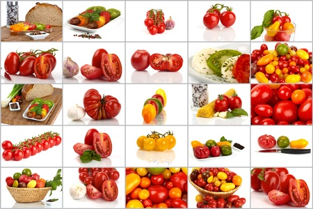 Collage of many different varieties of organic tomatoes photo
