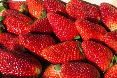 Fresh red big Strawberries in a box photo