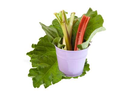 Rhubarb stalks in a pink metal bucket photo