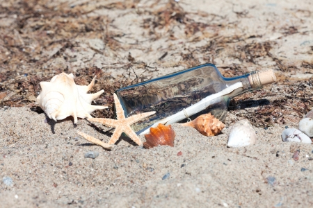 Message in a bottle on the beach with seashells and starfish photo