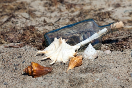 Message in a bottle on the beach of the Baltic Sea with mussels photo