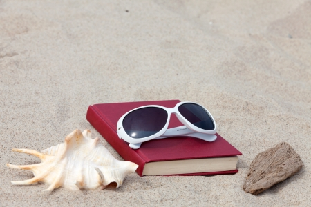 Book with a seashell and a piece of driftwood lying on the beach Stock Photo - 13967650