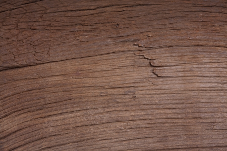 Background image from the photo of a very old oak board Stock Photo - 20239563
