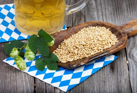 golden shovel: Glass of beer, hops and grain on an old grain scoop on a napkin with blue and white rhombuses on a rustic wooden table
