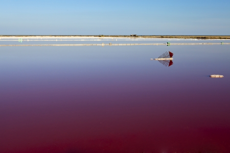 discolored: View over the water surface of a reddish discolored salt basin in southern France in Gruissan