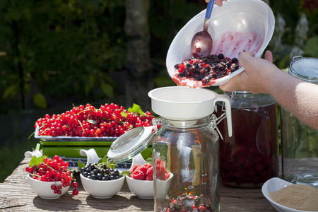 Ingredients and utensils for a homemade black currant liqueur, pour in mashed fruit with a funnel into a large canning jar