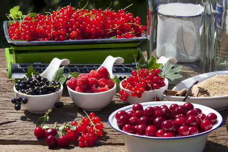 Fruity summer fruits freshly picked to prepare homemade liqueurs