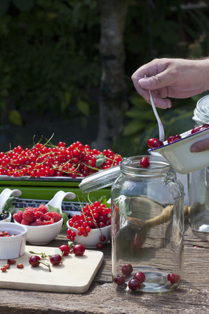 self made: Cherry liqueur preparation, step 4, fill pitted cherries in a canning jar Stock Photo