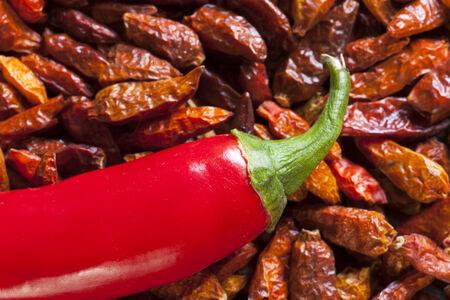 piri piri: Macro shot of a Piri Piri chili pepper on dried chillies