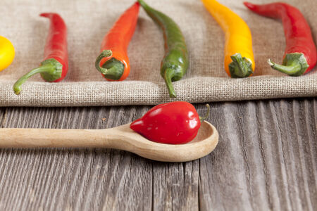 Red hot Habanero chili pepper on a cooking spoon and other chili peppers on a jute cloth photo