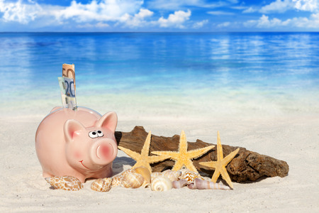 holiday budget: Piggy bank savings with banknotes, Seashells, Starfish and Drift Wood on the beach with much Copy Space for additional information