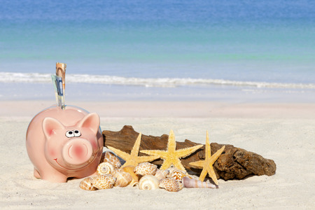 Piggy bank savings with banknotes, Seashells, Starfish and Drift Wood on the beach with much Copy Space for additional information
