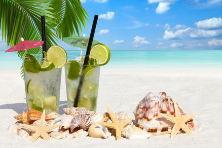 Fresh Mojito Cocktail with Starfish and Sea Shell on the Beach under Palm Leaves with much Copy Space for additional information Stock Photo