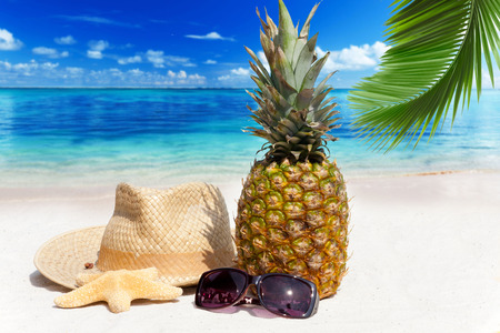 With straw hat, sunglasses and a pineapple fruit on tropical beach Standard-Bild