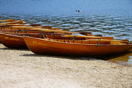 rowboats: Rowboats on the shore of the lake Titisee