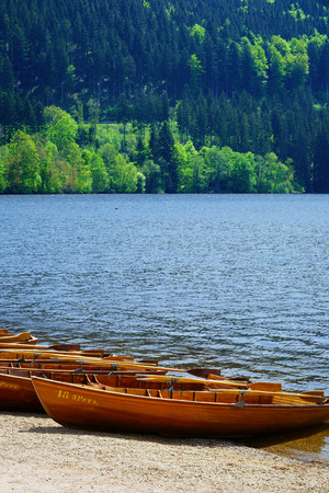 rowboats: Rowboats on the banks of Lake Titisee in the background of the Black Forest
