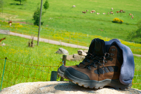 hiking boots: Brown leather Hiking boots with socks on a rock in front of a summer meadow