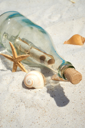 castaway: Message in a glass bottle lies on the sand beach with seashells and starfish