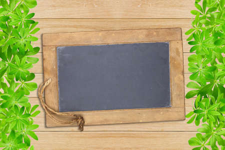 woodruff: Slate board framed left and right with woodruff leaves on wooden planks Stock Photo
