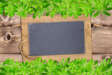 framed: Slate board framed top and bottom with woodruff leaves on old rustic wooden planks Stock Photo