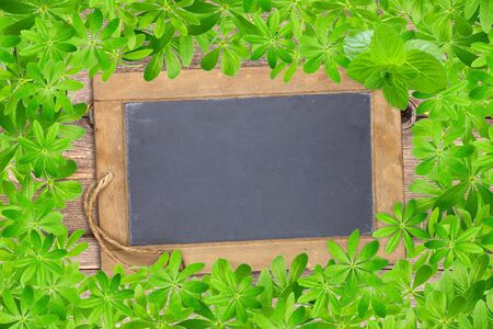 woodruff: Slate board framed with woodruff leaves on old rustic wooden planks