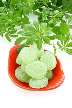 woodruff: Fresh Woodruff and candies in a red porcelain dish