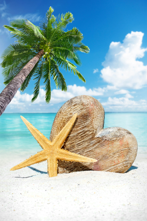 under heart: Large wooden heart with copy space and starfish on the sunny beach under a palm tree Stock Photo