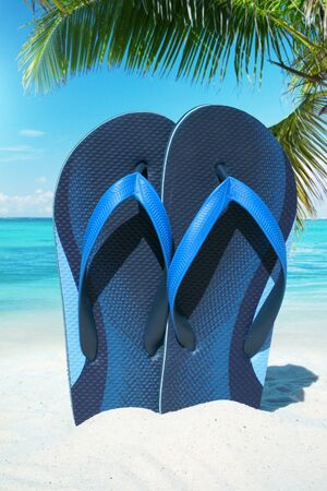 frond: Blue Flip Flops on the sunny beach under green palm frond