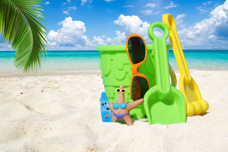 palm frond: With sunglasses and beach toys on the sunny beach under a palm frond