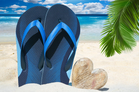 palm frond: Blue flip flops and a wooden heart with copy space under palm frond on the beach Archivio Fotografico