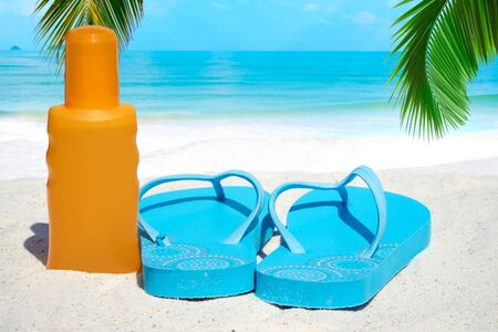 frond: Blue Flip flops a bootle suntan lotion under palm frond on the sunny beach Stock Photo