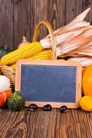 Autumn harvest festival motive with various pumpkins in front of a basket with corn cobs on a rustic wooden background with copy space on a slate board and in the lower and upper area of the picture Stock Photo