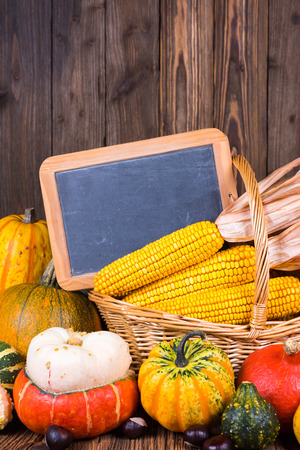 Autumn harvest festival motive with various pumpkins in front of a basket with corn cobs on a rustic wooden background with copy space on a slate board and in the upper area of the picture Stock Photo
