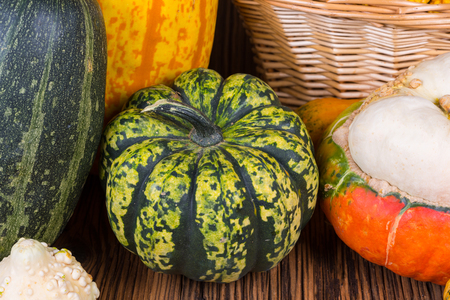 Closeup of a Gorgonzola pumpkin in front of other pumpkins on a rustic wooden background