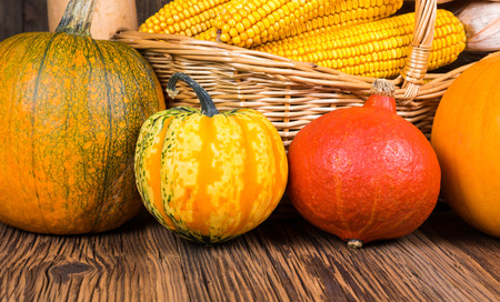 Close Up of various pumpkins in front of a basket with corn cops on a rustic wooden background