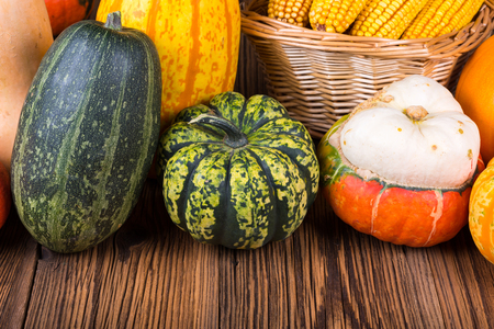 Autumn Thanksgiving motive with different colorful pumpkins on a rustic wooden background with copy space in lower area