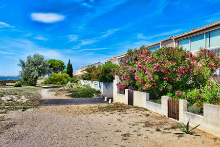 Flowers, plants and trees along the gardens of holiday homes in the resort of Les Ayguades near the small town of Gruissan in southern France Stock Photo